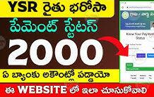 YSR రైతు భరోసా 2000 స్టేటస్ | YSR Raithu Bharosa 2000 Status | Raithu Bharosa | @ViralVasu